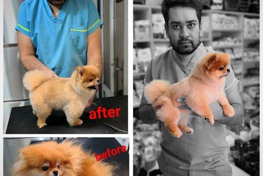 حسام حسینی آرایشگر حرفه ای