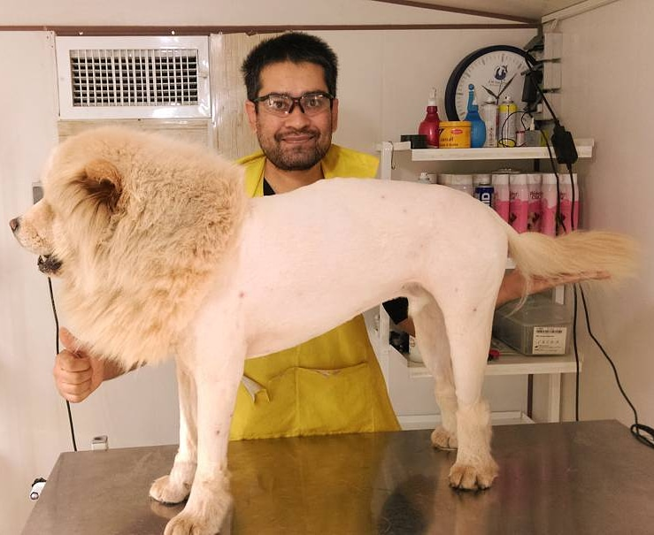حسام حسینی آرایشگر حیوانات
