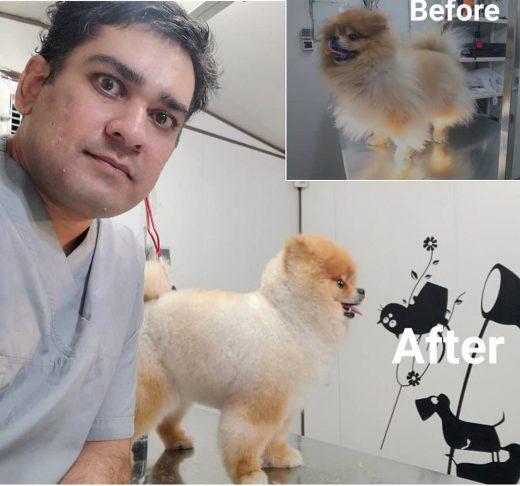 حسام حسینی آرایشگر پامرانین