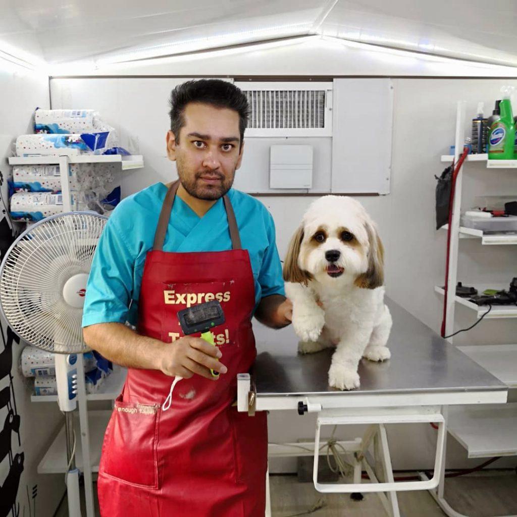 حسام حسینی آرایشگر شیتزو