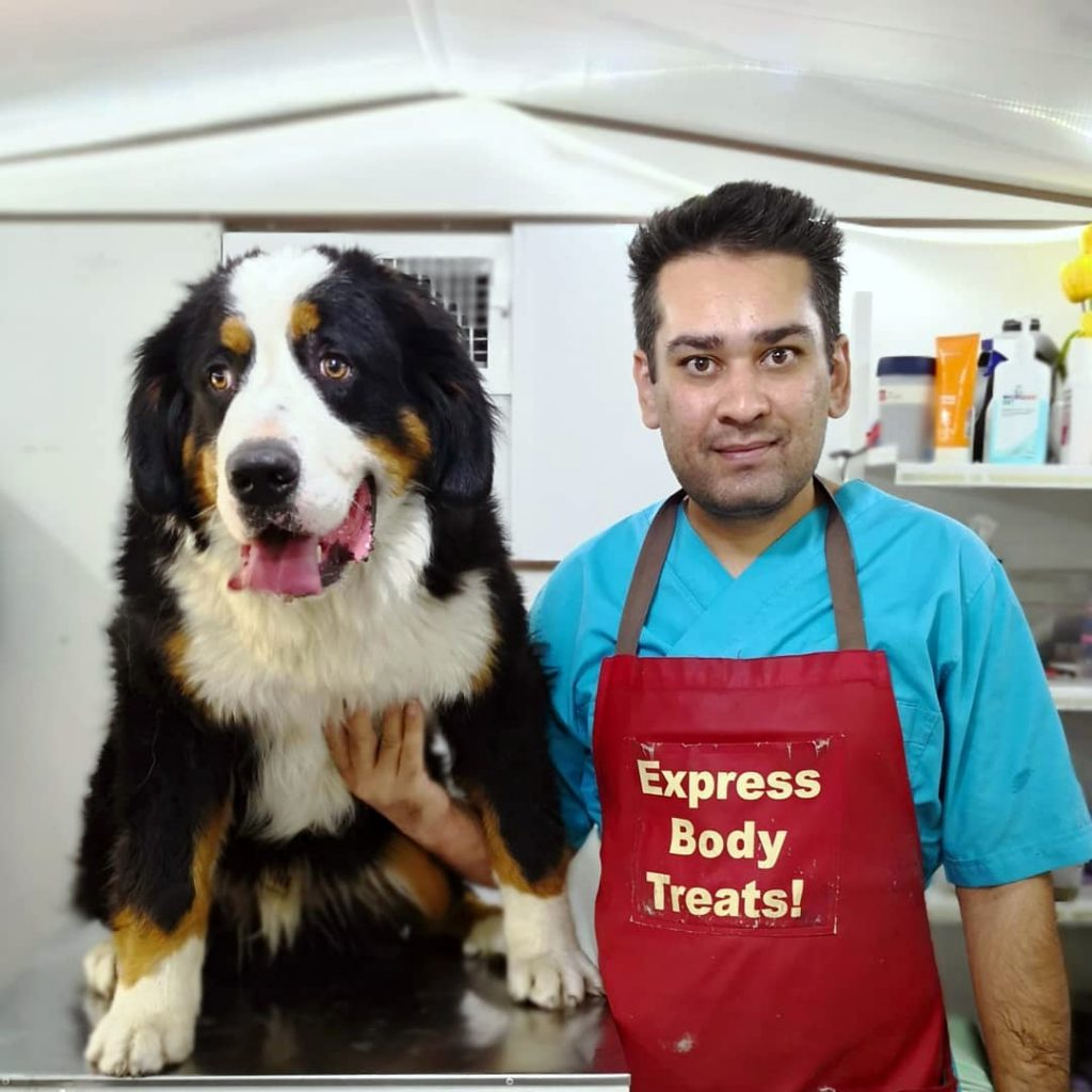 حسام حسینی و اصلاح بزرگترین سگ های ایران
